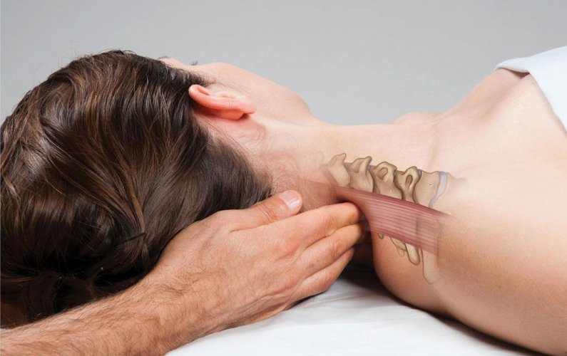 The Importance of Continuing Education for Massage Therapists